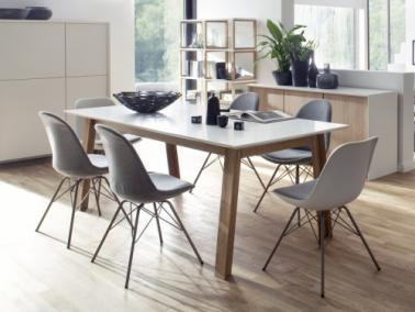 Tenzo PROFIL dining table