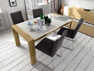 HÜLSTA Now! ET21 dining table
